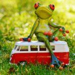Fahrzeug mit Frosch